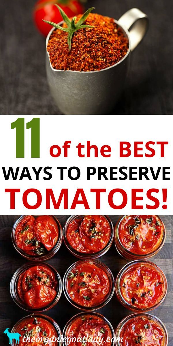 Best Ways to Preserve Tomatoes