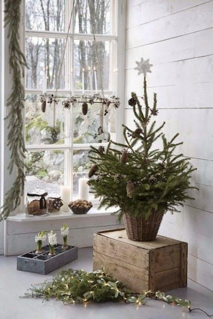 NATURE WHISPER: Modern Christmas Decor