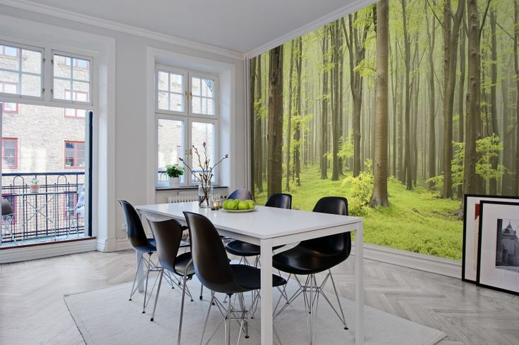 Wall mural R10101 Deciduous Forest