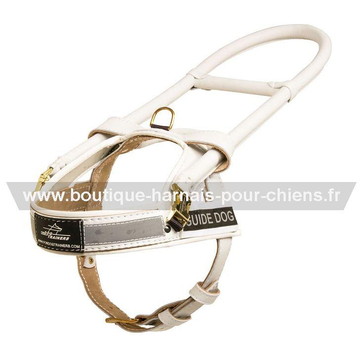 Harnais en cuir véritable de première qualité coloris blanc avec un cadre de 50 cm de longueur pour chien guide d'aveugle -> 138.30€  @fordogtrainersf #chienguide #guideaveugle Pensez à mentionner «J'aime» si ce produit vous plaît.