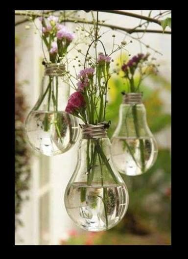 Glass hanging planters.