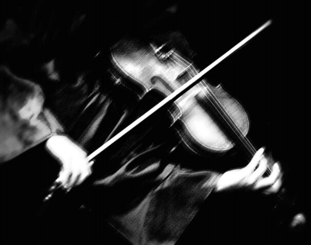 Violin Photography Online photo albums and web sites