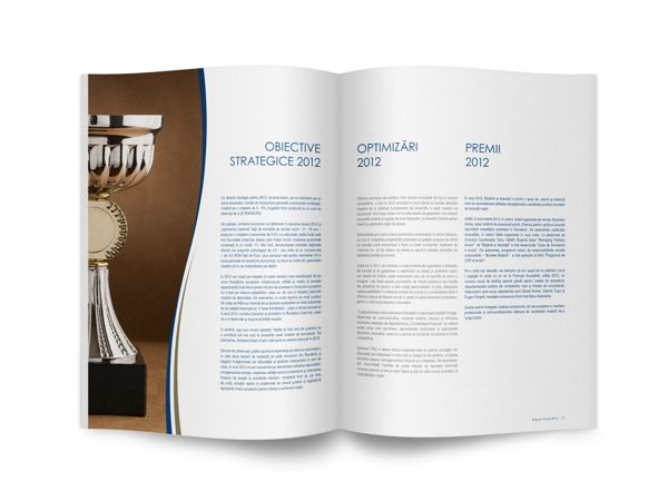 Bostina and Associates Annual Report 2012
