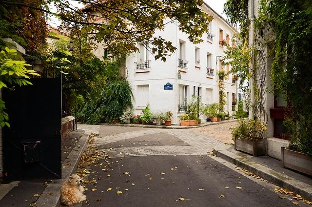 La Cité Florale, rue des Glycines, Paris VIII
