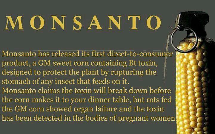 No GMO.....