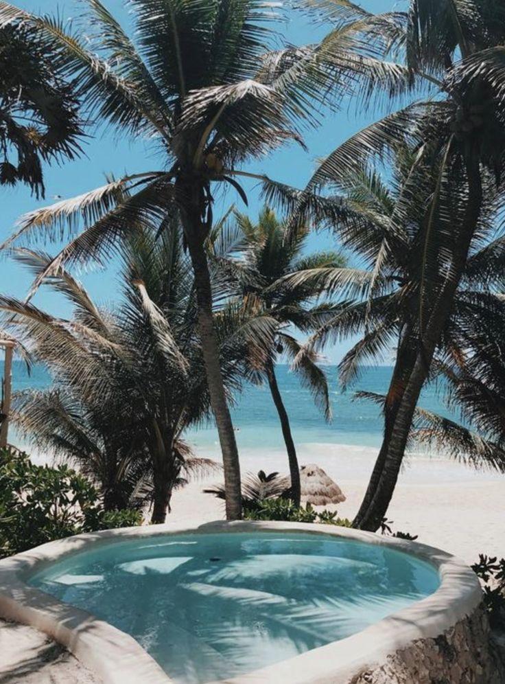 Tropical Island Adventures :: Escape to a Beach Paradise :: Soak in the Sun :: Palms + Ocean Air :: Free your Wild