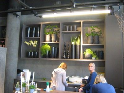 Bloemenwinkel in Stockholm: Regeringsgatans Blommor