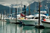 Hit the highlights of Seward on this walking tour, including Main Street and the Alaska SeaLife Center.