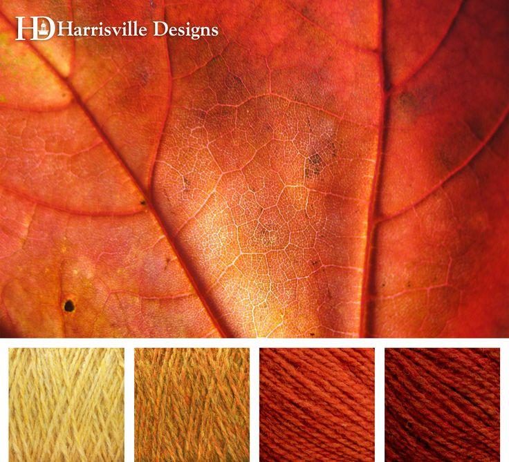 Dazzling autumn leaf color palette. Shetland Yarn: Cornsilk, Foliage, Poppy, and Topaz.
