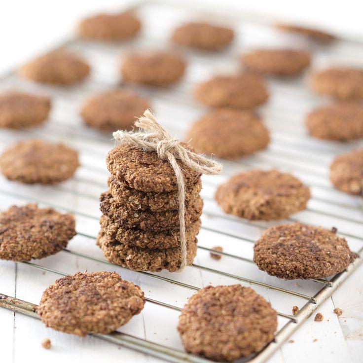 Winter walnoot koekjes met havermout