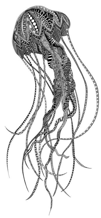 Jellyfish print by Lindsay MKE