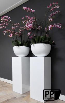 set in wit met zijde orchideeën