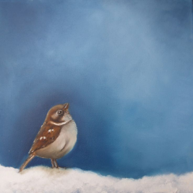 Sparrow in the snow 1