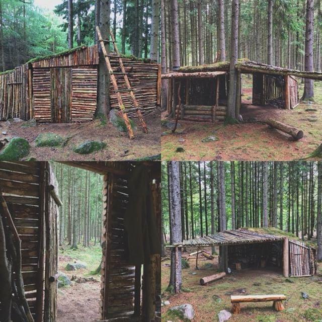 wholesale dealer bb0e8 032f4 Bushcraft Shelter #survival #camping #bushcraft #camping ...