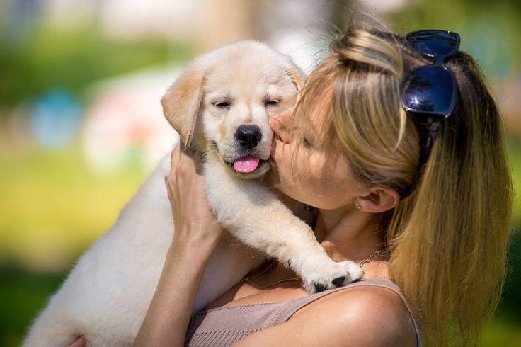 Woman kissing a puppy   Inspirowani Naturą
