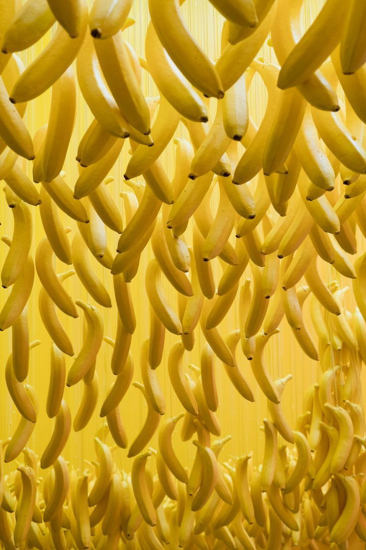 "MUSEUM OF ICE CREAM IN LOS ANGLES, CALIFORNIA BY ARTIST UNKNOWN. Two Bananas Art represents the artwork of Richard Neuman. Amazingly banana paintings, sculptures, signs, banana anything all exist somewhere. Just for fun, I have included creative images of the yellow fruit. May you find them appealing:) Now pick through Pinterest pins of ""Bananas As Art"" which have impressed me most.  SEE MORE BANANAS AS ART NOW.... https://www.etsy.com/shop/TwoBananasArt?ref=hdr_shop_menu&search_query=banana"