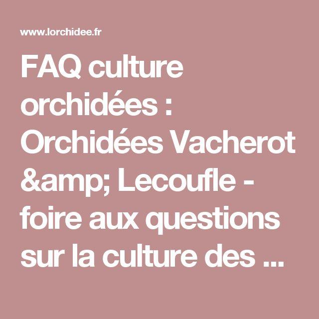 FAQ culture orchidées : Orchidées Vacherot & Lecoufle - foire aux questions sur la culture des orchidées