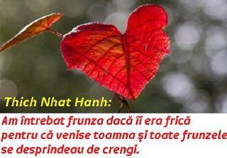 diane.ro: O frunză toamna | Din poezia şi înţelepciunea maes...
