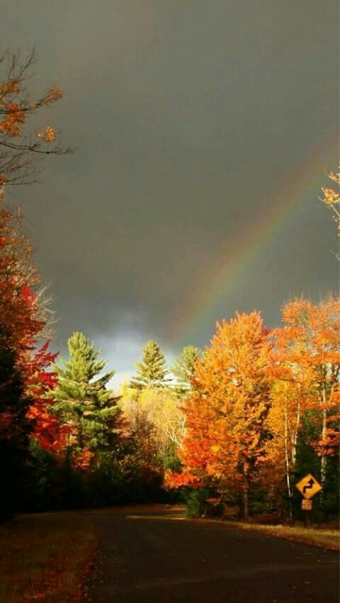 Fall leaves and rainbow..reminds me of New York State.