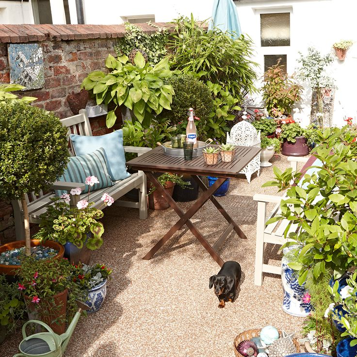 When a budget is tight, gravel is a good alternative hard surface for the garden - 20 Potted-plants-various-sizes-small-garden-ideas Keith Henderson