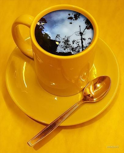 Yellow coffee cup