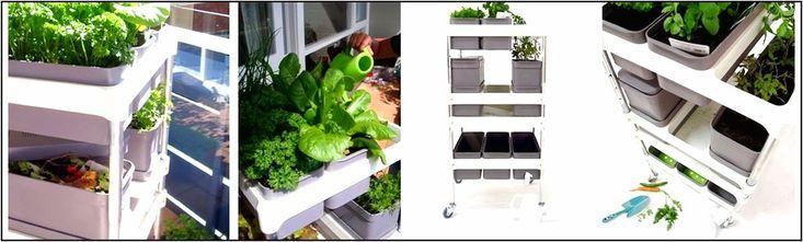 Moderne Systeme, mit denen Ihr Kräutergarten auf kleinem Raum gedeihen kann …   – Anbau Ideen