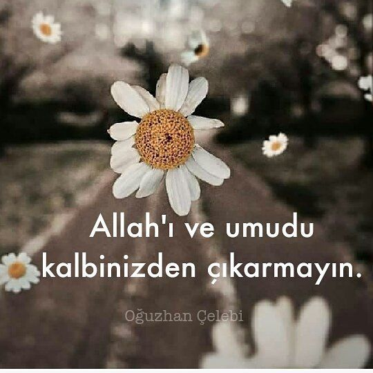Allah'ı ve umudu kalbinizden çıkarmayın. Budur yalnızca ayakta tutan bizi.