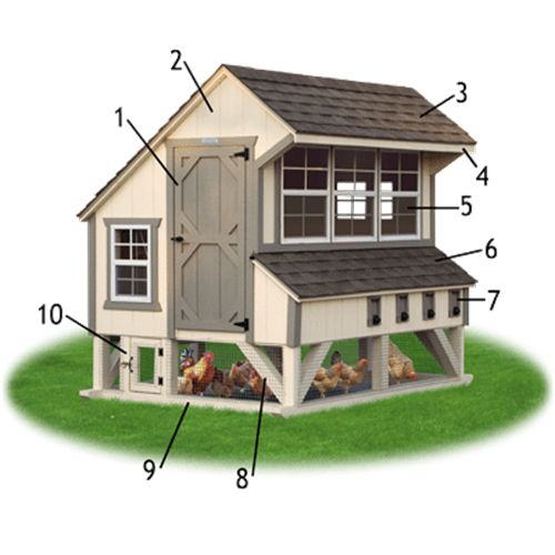 """: 1) Entry Door for easy access and cleaning.  (2) Siding: 50-year warranted Smart Side in choice of color.  (3) Roof: Lifetime warranted shingles.  (4) 10"""" Overhang to protect open windows from rain.  (5) Lots of Windows for light and ventilation.  (6) Nesting Boxes: Shingle roof with flashing to eliminate leaks and rotting.  (7) Gather eggs from outside with ease!         Egg collection doors with spring-loaded hinges.  (8) Bottom Area Enclosed with Wire:        Allows your chickens to…"""