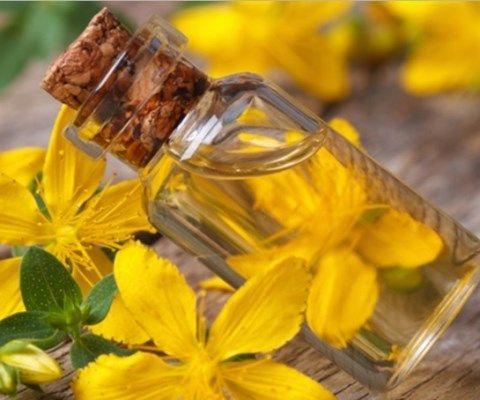 Sarı Kantaron Yağı Nasıl Yapılır, Faydaları Nelerdir?
