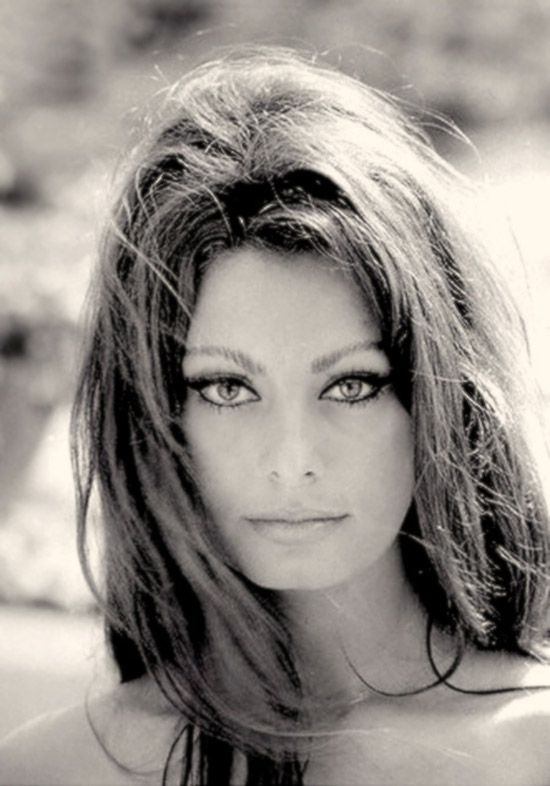 Sexy eyes-beautiful hair sophia loren portrait photo print pinup cheesecake girl