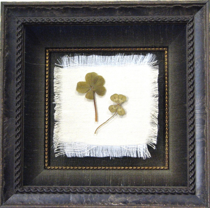 A  shadowbox frame with a custom seamless silk wrapped liner, fillet, museum   glass, and the   clovers are   suspended with a   clear filament   above frayed silk   fabric made this a   little jewel of a   display.