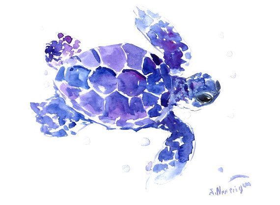 Sea Turtle Oriignal watercolor painting 9 X 12 in by ORIGINALONLY