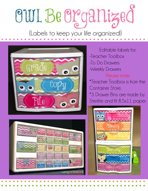 Owl themed labels for Sterilite Drawers to help you stay organized!