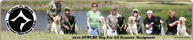 DFWLRC | Dallas-Fort Worth Labrador Retriever Club