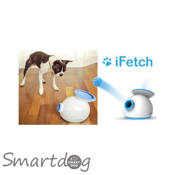 iFetch apportkanon til hunde