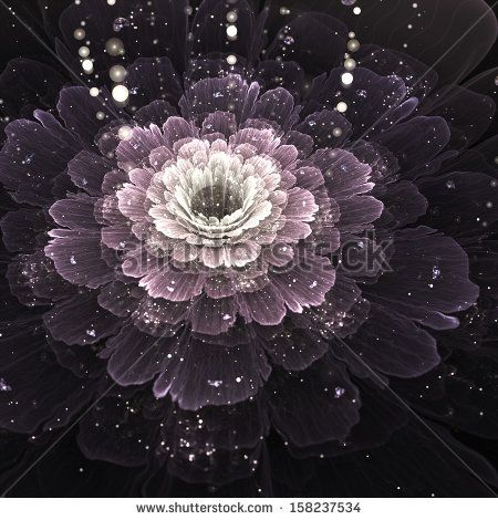 violet fractal flower with droplets of water on black background, illustration by Anikakodydkova, via Shutterstock