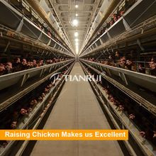 Poultry Equipment, Poultry Equipment direct from Qingdao Tianrui Farming Scientific Co., Ltd. in China (Mainland)