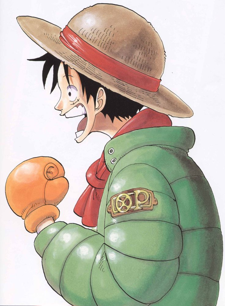 D Monkey Luffy 17 Best images ...