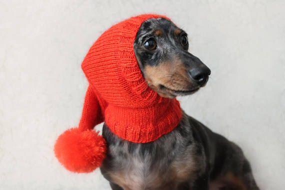 Knitting Pattern Dog Hat Dachshund Hat Pet Clothes Pet Hat