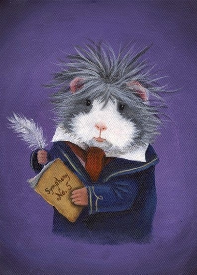 Ludpig Van Beethoven Guinea Pig