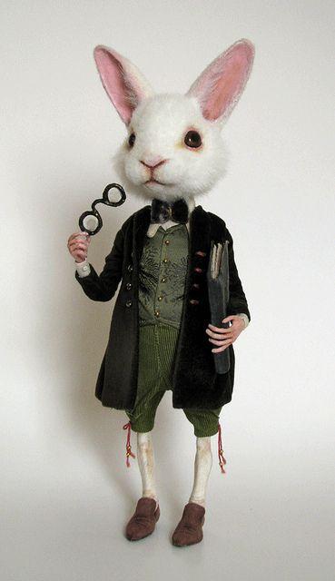 a special rabbit
