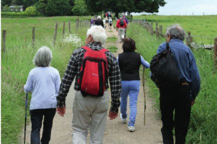 Please come and join us on the Wey & Arun Canal Trust annual Poddle (sponsored walk) on Sunday June 7, 2015. More details, entry form & poster at www.weyandarun.co.uk