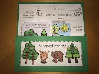 A Forest Habitat - Layers of the Forest Flip Book, Reproducible Forest Habitat Book, Forest Habitat Worksheets etc.