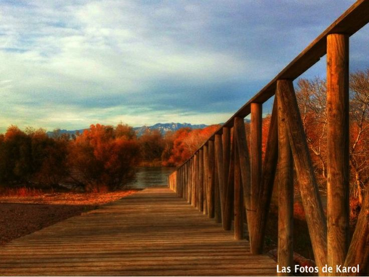 #lugares #puentes #caminos #paisajes #lagos