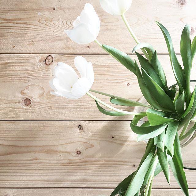 D I E N S T A G ! . Yippie der Montag ist überstanden..und nach dem Schneechaos und Gewitter heute morgen, kann der Tag heute ja nur noch besser werden ✨ #thinkpositive . Wenigstens die Tulpen erinnern mich jeden Tag an Frühling und die Sonne! . Wünsche euch allen einen schöneren Dienstag 😘 • • #fastwiemontag #tuliptuesday #wohnschmuck #germaninteriorbloggers #solebich #interior123 #minimalism #diningtable #diy #woodlovers #antiwinter #sharemywestwingstyle #interior #skandinavischwohnen…
