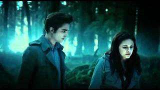 A scene from twilight.. I love these movie series.
