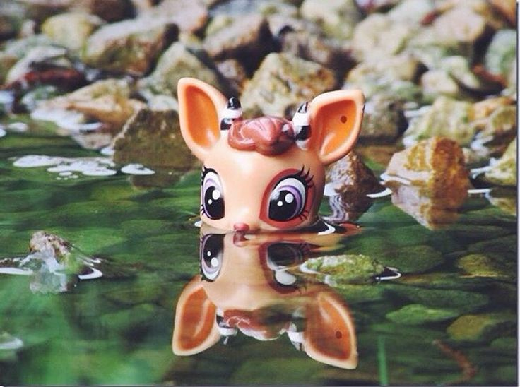 Littlest pet shop pictur (c) cookiecrunchlps