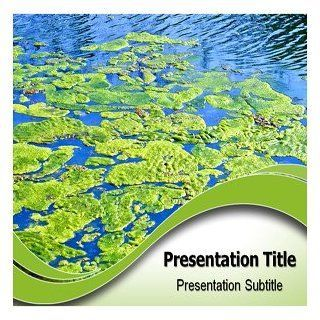Algae Powerpoint Templates   Algae (PPT) Powerpoint Backgrounds Software