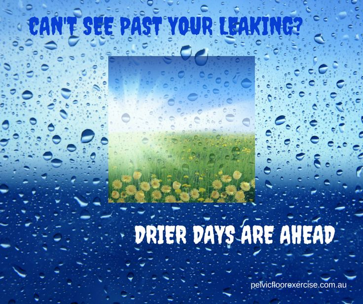 Can't see past the leaking? Drier days are ahead