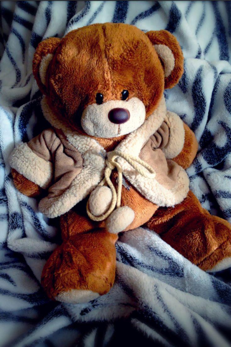 My little Tedy !!! ❤️❤️